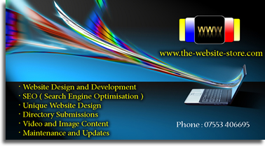 The_Website_Store_affordable_web_design-services_business_card_jpeg